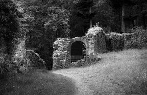 Die Burg der Wilden